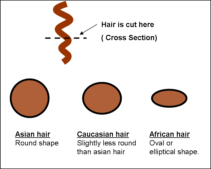 indian hair extensions benefits over european hair