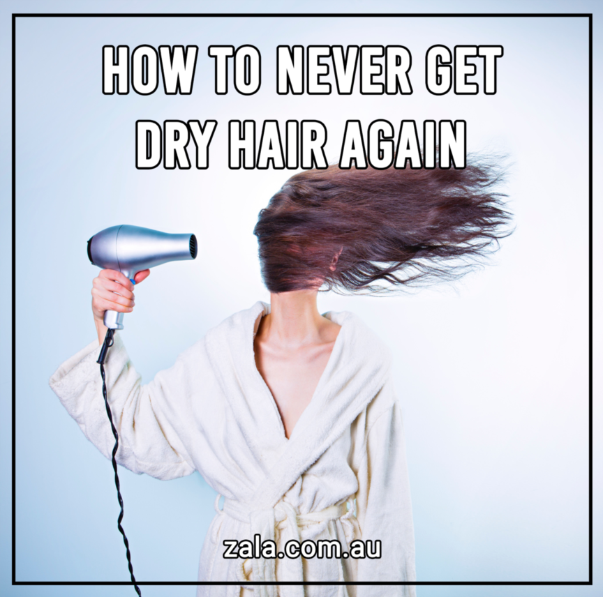 zala how to never get dry hair again