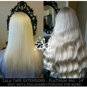 ZALA TAPE HAIR EXTENSIONS, PLATINUM #60 - 24 INCH
